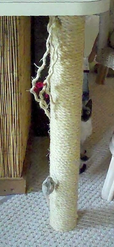 Photo of a homemade cat scratching post.