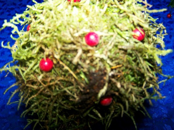 Red craft berries in moss covered ball