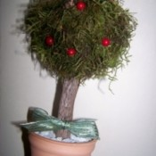 Mini Topiary Tree