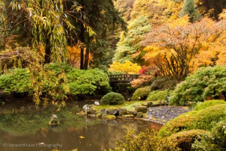 Autumn Colors at Portland Japanese Garden