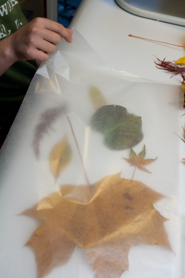 Autumn Lanterns, Laying out Wax Paper