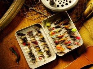 Saving Money on Fishing