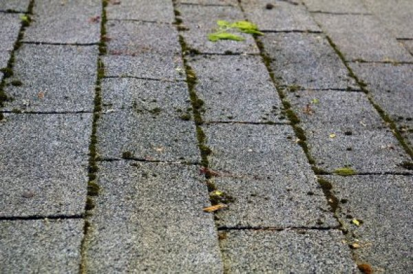 Removing Moss From Asphalt Roof Tiles Thriftyfun