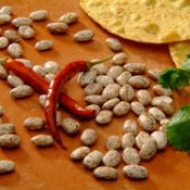 Scattering of dried pinto beans with red peppers and cilantro. Cooking Dried Beans