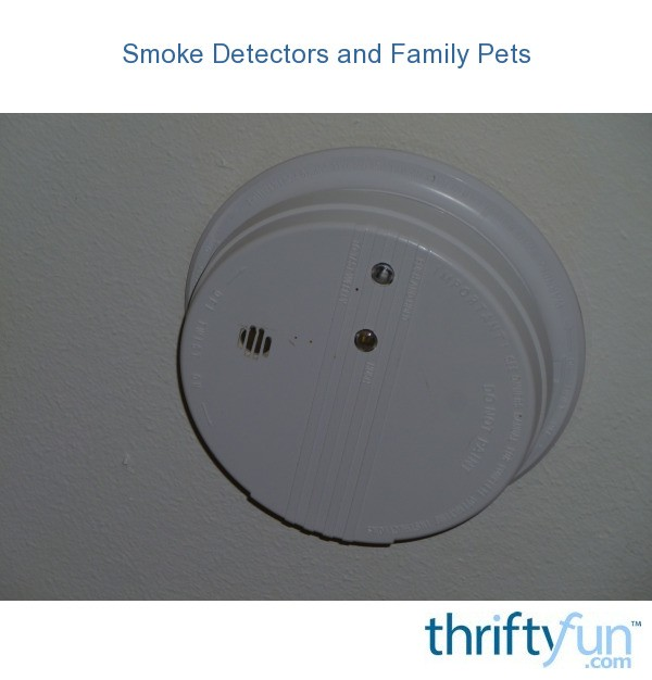 Smoke Detectors And Family Pets Thriftyfun