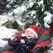 Christmas at Home Child Under Snowy Tree