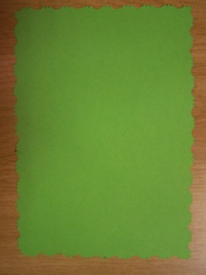 Use the pair of pattern edged scissors to cut a piece of green cardboard.