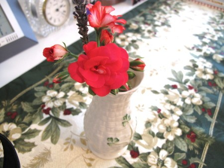 Bright red geranium in beatiful vase.