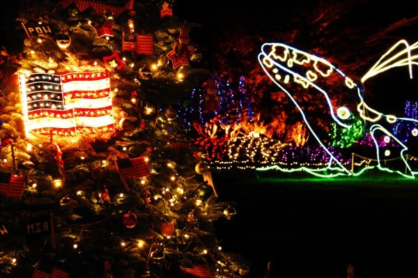 Holiday lights with whale.