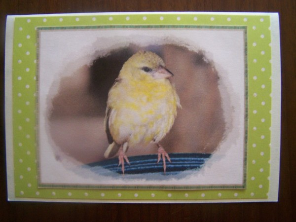 Card 2 of the completed set.