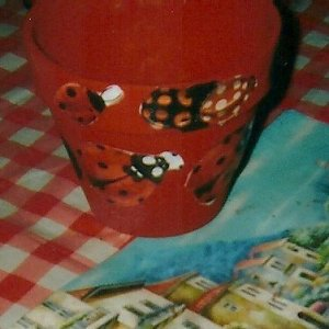 Pot with ladybug cutouts applies.