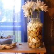 Beach Rocks in a Vase