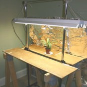 "Using Grow Lights"" Regular old ""non-fanfare"" fluorescent tube lighting is the easiest and most common type of artificial lighting for growing plants and starting seeds"