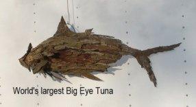 rectangle tuna