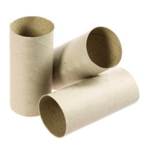 Empty cardboard toilet paper rolls, ready for reusing.