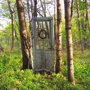 Door hanging between trees in the garden.