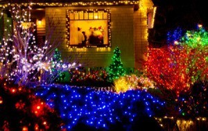 Lighted display on gardens at Shore Acres.