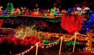 Lights on grounds at Shore Acres.