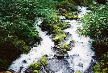 A waterfall near the Columbia River Gorge.