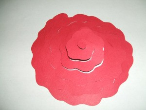 Spiral cut circle for rose.