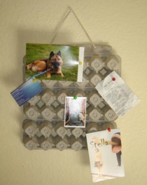 A bulletin board made from an egg carton.