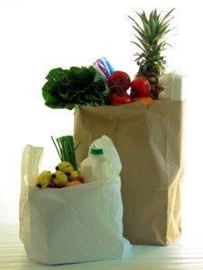 Paper or plastic bag when shopping?