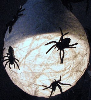 Spider decoration on a light fixture.