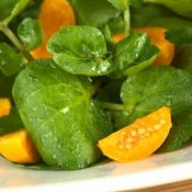Watercress and Physalis Salad