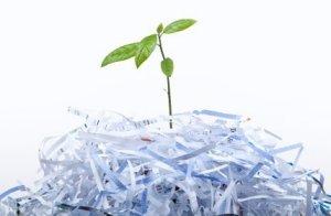 Uses for Shredded Paper, shredded paper
