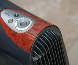 Air Ionizer and Purifier for Allergies