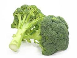 Head of broccoli.