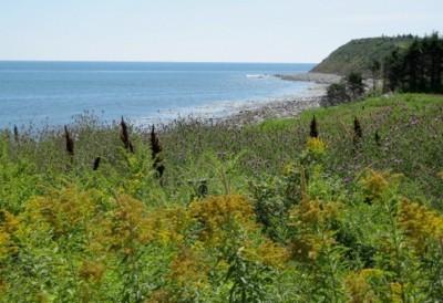 Drumlins (Nova Scotia)