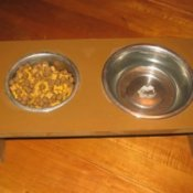 Elevated Dog Dishes