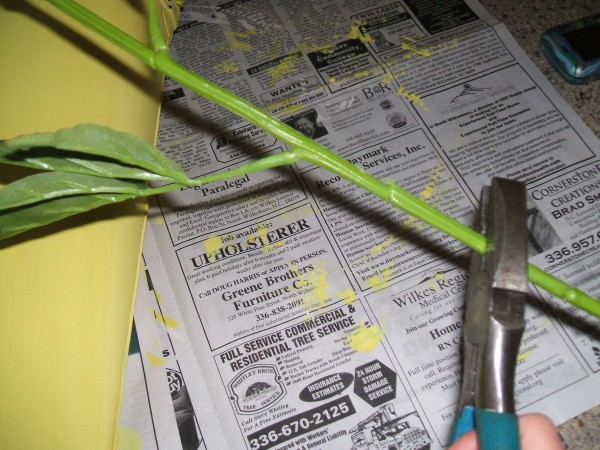 Cutting flower stems to length.