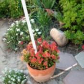 garden path support