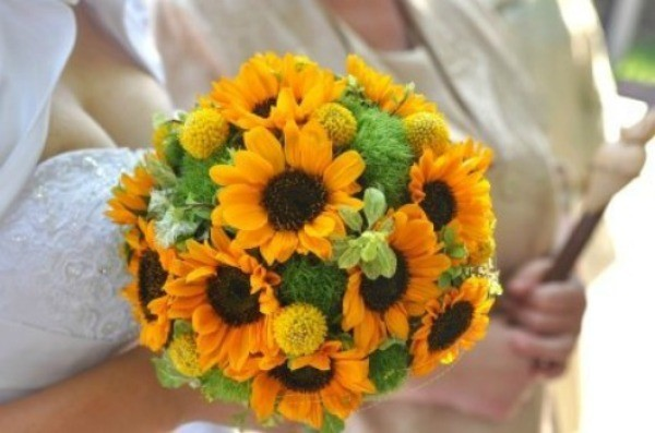 Making a sunflower wedding bouquet thriftyfun bouquet of sunflowers junglespirit Images