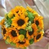 Bouquet of sunflowers.