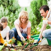 Family Making Flower Beds
