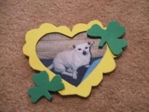 St. Patrick's Day Magnet Craft