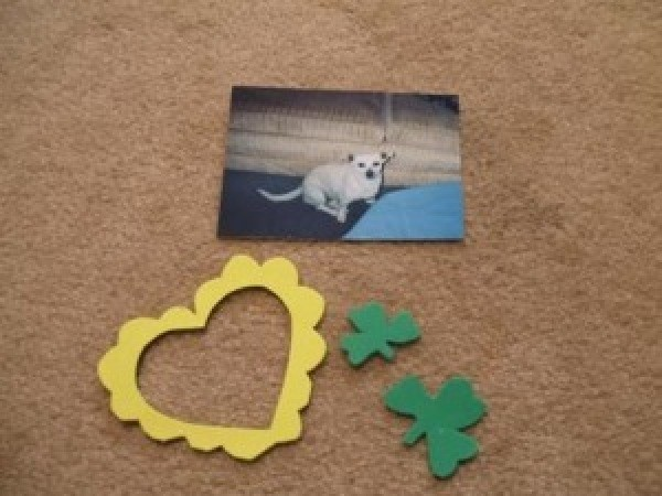st. patrick's day magnet pieces