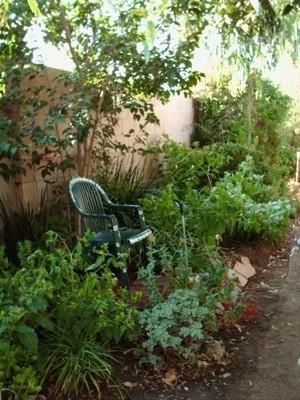 Path garden.