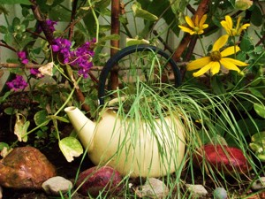 Tea pot planter.