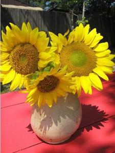 Sunflowers As Wedding Centerpieces