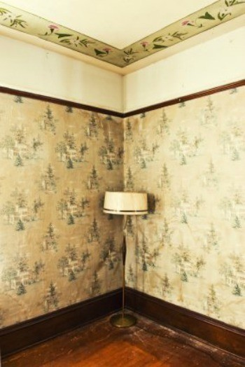 Cleaning Grease Off Wallpaper | ThriftyFun
