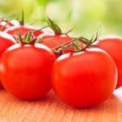 Saving Money on Tomatoes