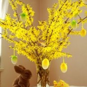Blooming Spring Branches in a vase