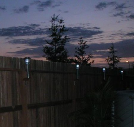 Attach Solar Lights to Your Fence - Several solar lights shown at night.