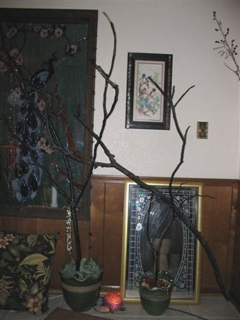 Potted painted tree branches.