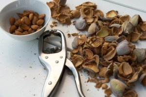 Shelling Nuts