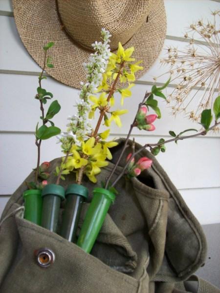 Preserving Wild Flowers